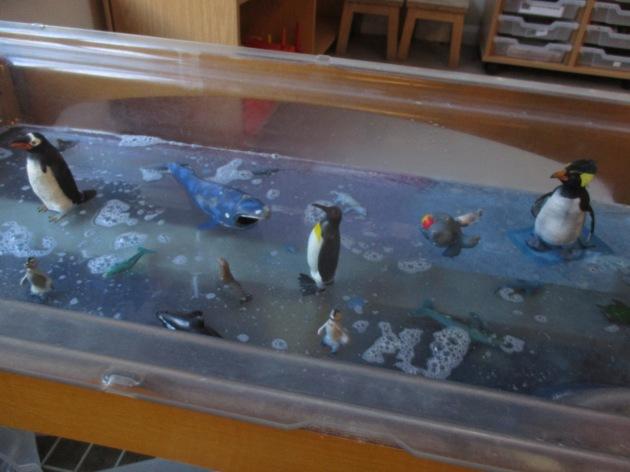 Exploring arctic animals in water.
